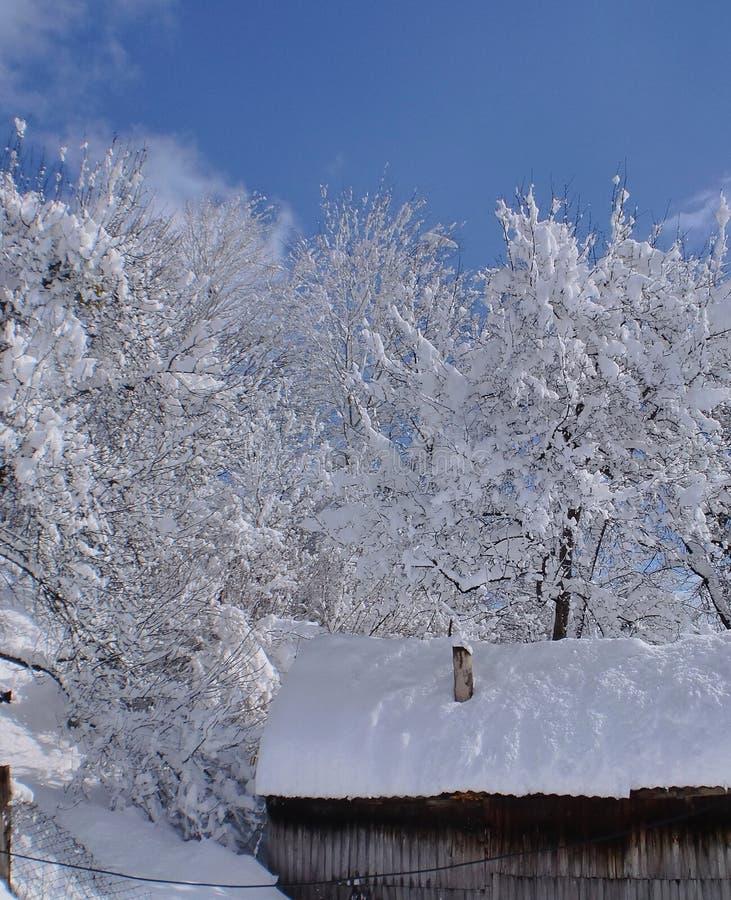 Ein heller und sonniger Wintertag stockfotografie