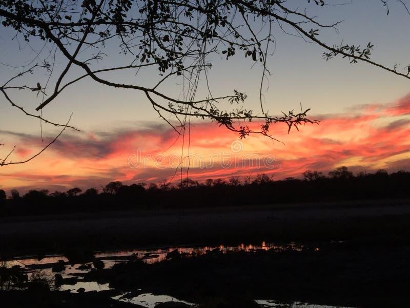 Ein Himmel gefüllt mit Feuer stockbilder