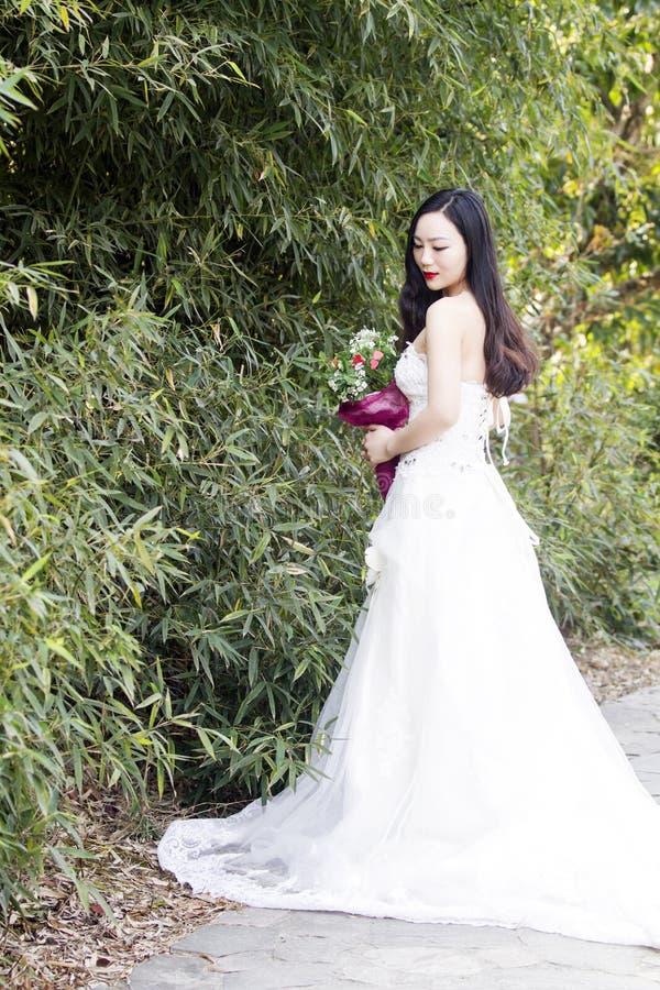 Ein Hochzeitsfoto/-porträt der jungen Frau stehen Bambusse bereit stockbilder