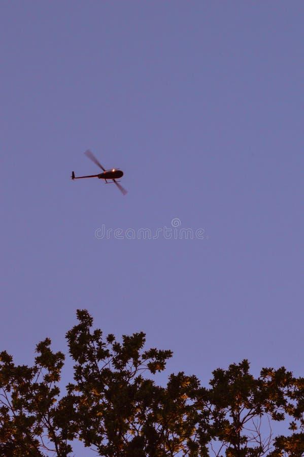 Ein Hubschrauber, Bäume und ein klarer Himmel lizenzfreie stockfotos