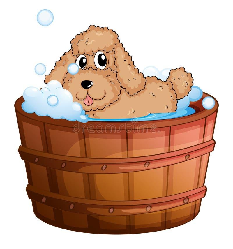 Ein Hund, der ein Bad nimmt stock abbildung