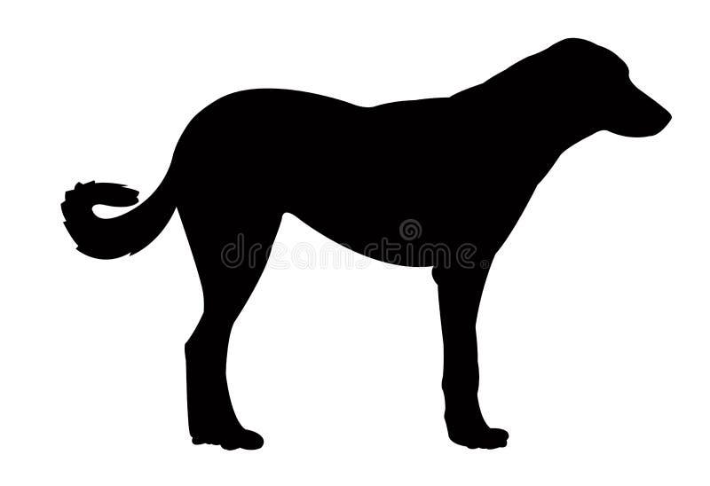 Ein Hundekörper, Schattenbildvektor vektor abbildung