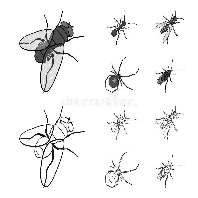 Ein Insektengliederfüßer, ein osa, eine Spinne, eine Schabe Insekten stellten Sammlungsikonen im Entwurf, einfarbiger Artvektor e stock abbildung