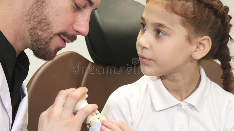 Ein interessanter Doktor erklärt einem neugierigen Mädchen über die Struktur des Kiefers stockbilder