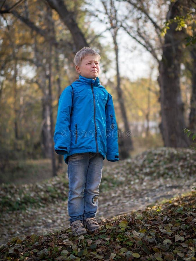 Ein 7-jähriger Junge schloss seine Augen von der Sonne in einem Herbstpark lizenzfreies stockbild