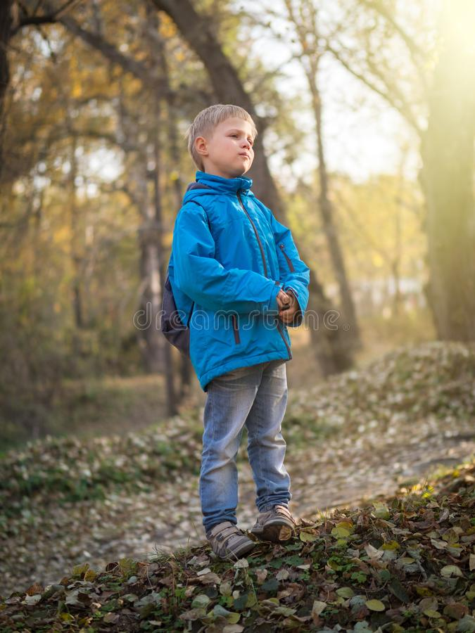 Ein 7-jähriger Junge wird durch die untergehende Sonne in einem Herbstpark beleuchtet stockbild