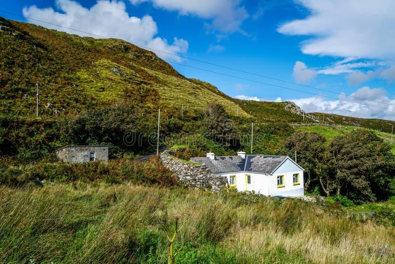 Ein jähriges Plushaus drei hundert lizenzfreies stockfoto