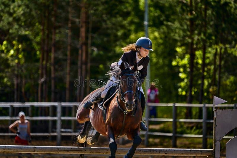 Ein Jockey der jungen Frau auf einem Pferd f?hrt einen Sprung ?ber der Sperre durch Wettbewerbe im Reitersport stockfotos