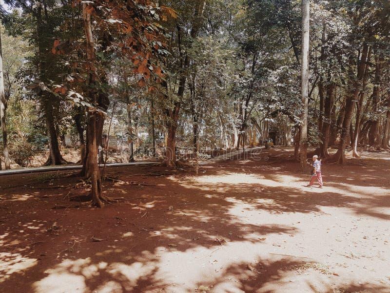 Ein Junge, der allein in eine leere Park Bd-Stadt geht lizenzfreie stockfotografie
