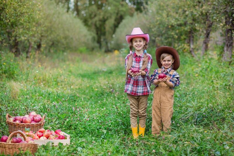 Ein Junge und ein M?dchen in bovboyskih H?ten werden in den Herbst ?pfel sammelnd miteinbezogen lizenzfreie stockfotos