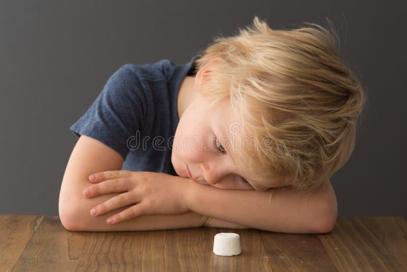 Ein junger blonder Junge betrachtet einen einzelnen Eibisch stockfotos
