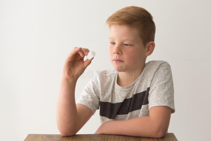 Ein junger blonder Junge studiert einen einzelnen Eibisch lizenzfreies stockfoto