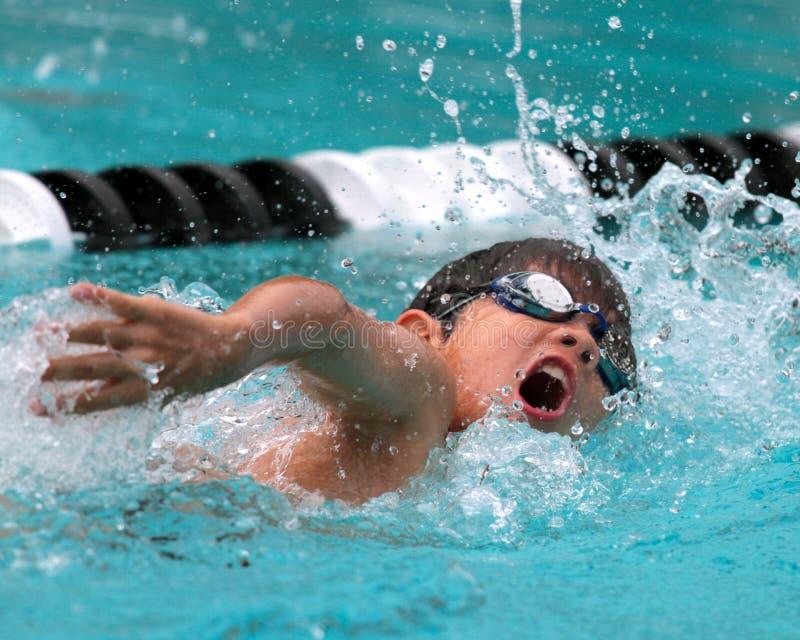 Ein junger Junge konkurriert in der Freistilschwimmen lizenzfreies stockbild