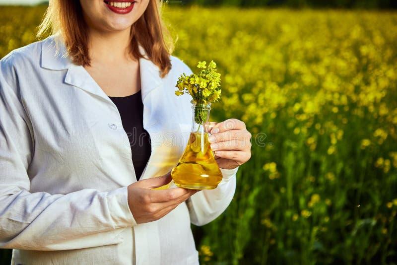 Ein junger schöner Biologe oder ein Agronom überprüft die Qualität des Rapsöls auf einem Rapsfeld Agrargesch?ftskonzept lizenzfreie stockfotos
