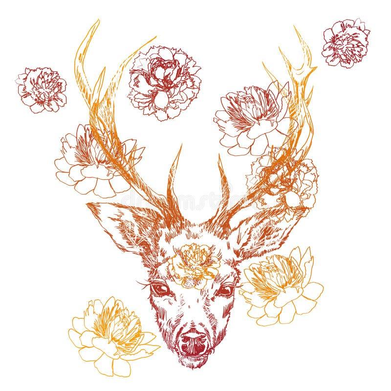 Ein junges Rotwild mit hornigen Hörnern, auf denen Pfingstrosen gepflanzt werden Abbildung Entwerfen Sie eine Tätowierung, ein Sy lizenzfreie abbildung