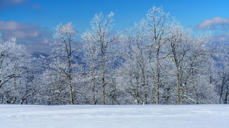 Ein kalter, klarer Winter-Tag lizenzfreie stockfotos