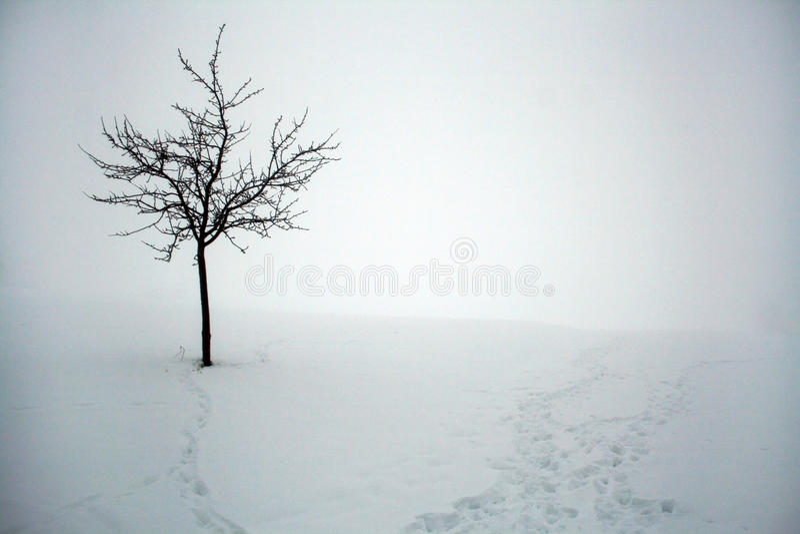 Ein kalter Tag des Winters im Bayern stockbild