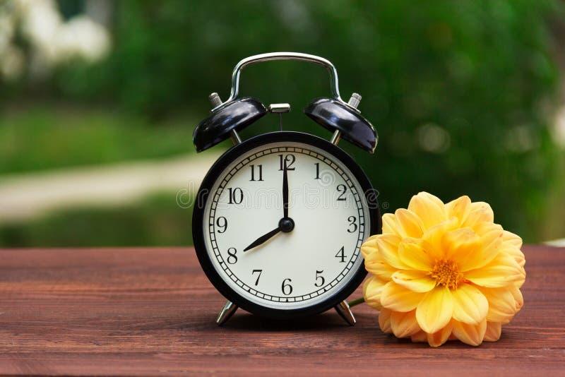 Ein klassischer schwarzer Wecker im Garten auf dem Tisch Eine Uhr auf einem grünen natürlichen Hintergrund Kopieren Sie Platz stockfotografie