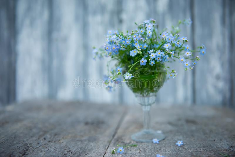 Ein kleiner Blumenstrauß von Vergissmeinnichten in einem Kristallglas auf einem unscharfen Hintergrund von den Brettern gemalt m lizenzfreie stockfotografie