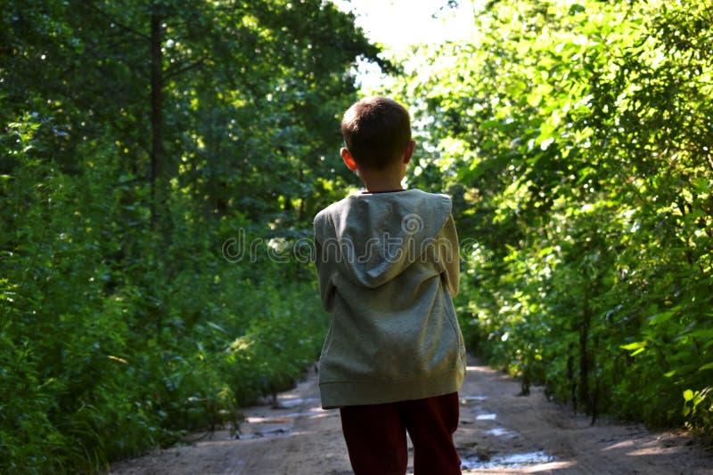 Ein kleiner Junge im Wald auf Sommer lizenzfreies stockfoto