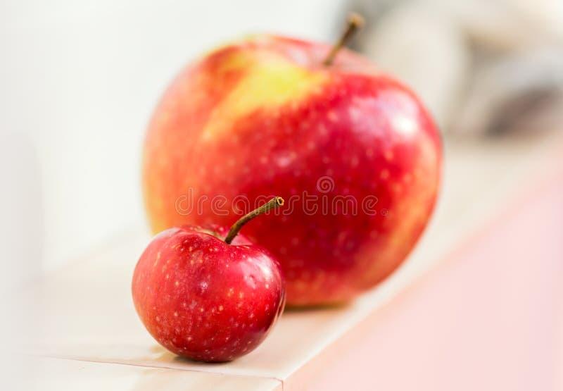 Ein kleiner Paradiesapfel auf einem Hintergrund eines großen Apfels Mutter mit einem Kind Groß und klein, vergleichen Sie, lizenzfreie stockfotos