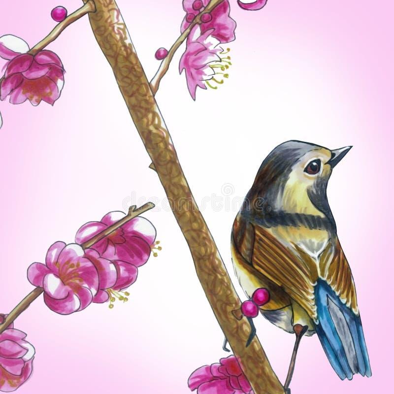 Ein kleiner Vogel stockbild
