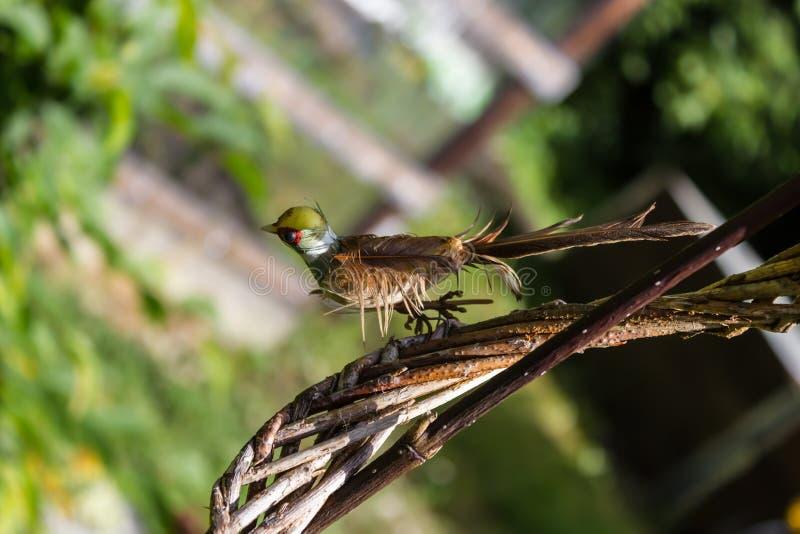 Ein kleiner Vogel sitzt im Garten als Dekoration lizenzfreie stockbilder