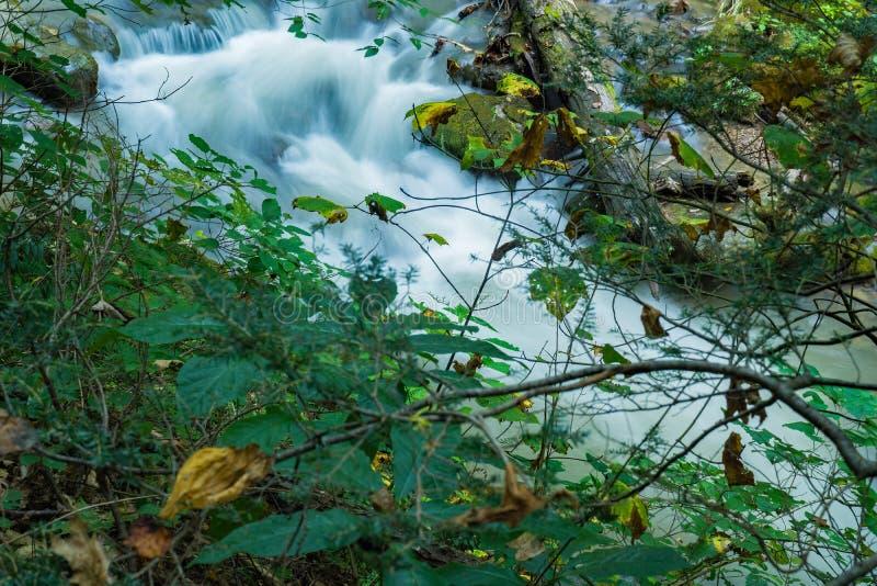 Ein kleiner Wasserfall auf einem wilden Saiblings-Strom lizenzfreies stockfoto