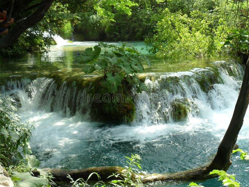 Ein kleiner Wasserfall im Nationalpark Plitvika Jezera lizenzfreies stockbild