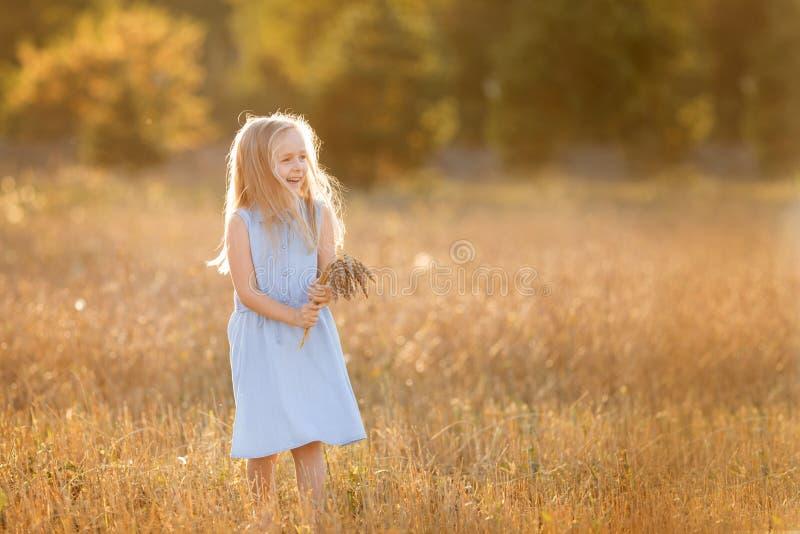 Ein kleines blondes Mädchen steht im Sommer auf Weizenfeldern mit Spikelets in den Händen lizenzfreie stockfotografie