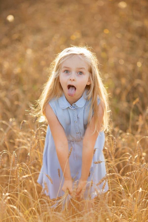 Ein kleines blondes Mädchen steht im Sommer auf Weizenfeldern mit Spikelets in den Händen stockfoto