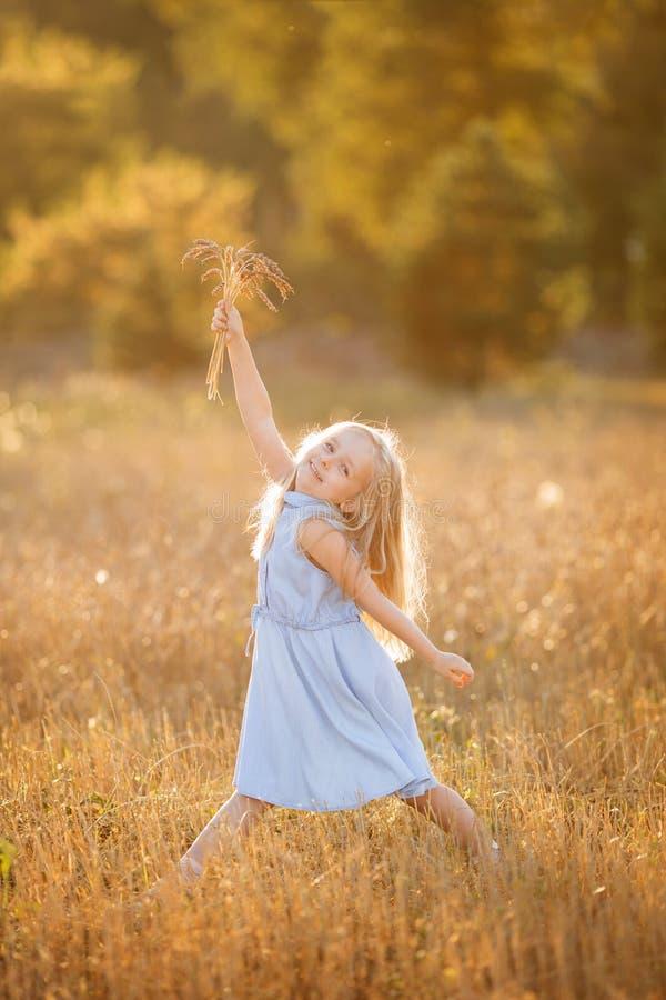 Ein kleines blondes Mädchen steht im Sommer auf Weizenfeldern mit Spikelets in den Händen lizenzfreie stockbilder