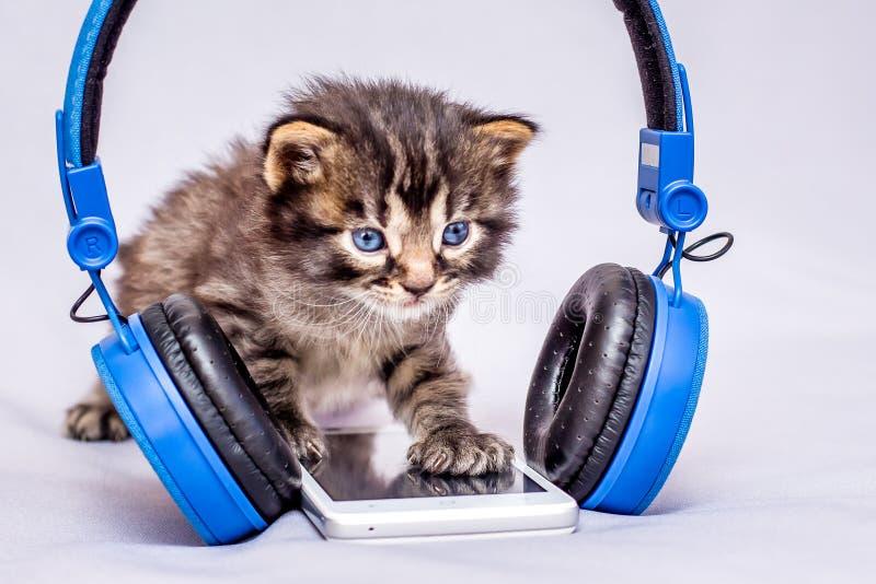 Ein kleines gestreiftes Kätzchen nahe einem Handy und Kopfhörern kurve lizenzfreie stockfotos