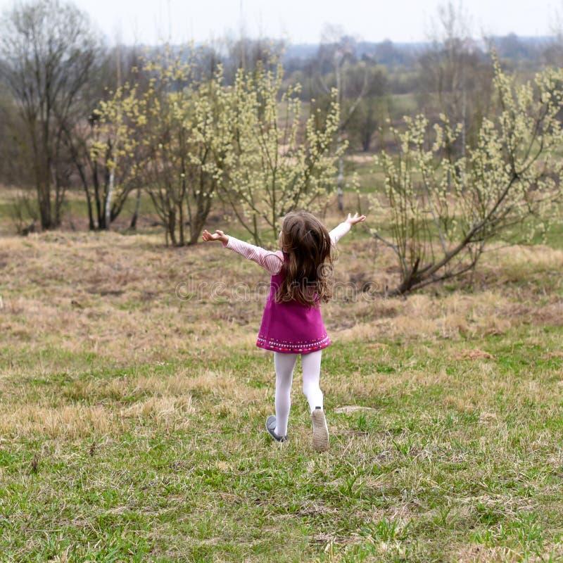 Ein kleines Mädchen, das auf dem Gras mit ihr zurück zu der Kamera läuft stockfotografie