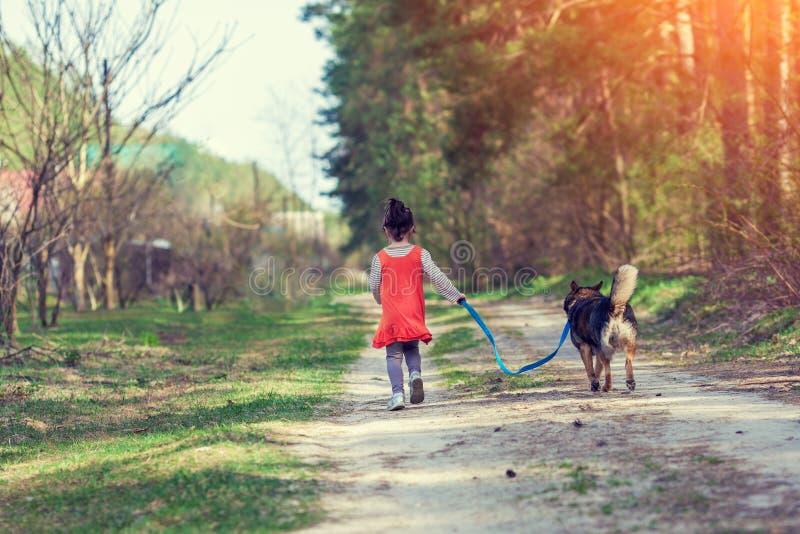 Ein kleines Mädchen geht mit einem Hund lizenzfreie stockbilder