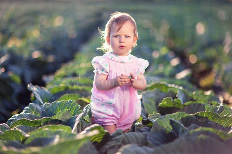 Ein kleines Mädchen steht mitten in einem Feld des Kohls lizenzfreie stockfotos