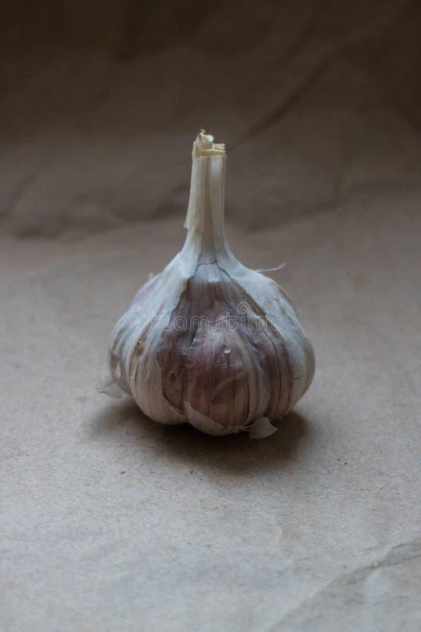 Ein Kopf Knoblauch auf einem beige Papierhintergrund stockfotos