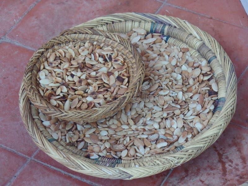 Ein Korb von den Argannussoberteilen benutzt für die Produktion des Arganöls in Marokko stockfotografie