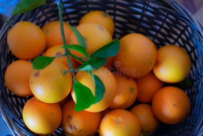 Ein Korb von frisch ausgewählten Orangen lizenzfreie stockbilder