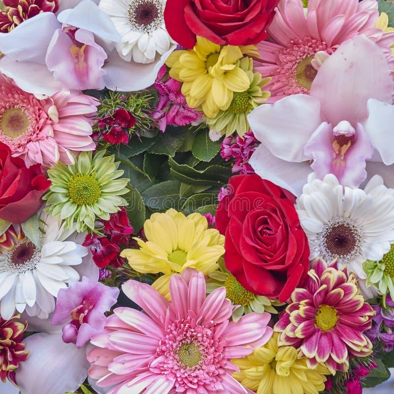 Ein Kranz von bunten Blumen lizenzfreie stockfotografie