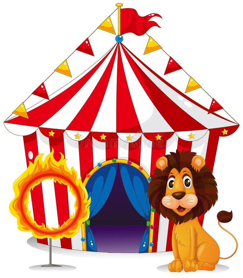 Ein Löwe und ein Feuer schellen vor dem Zirkuszelt lizenzfreie abbildung