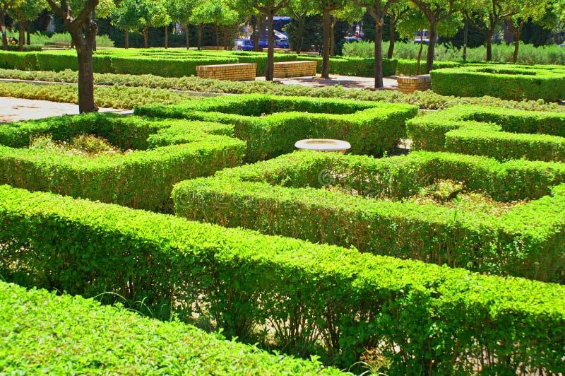 Ein Labyrinth von grünen Büschen stockbilder