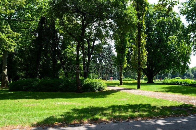 Ein leerer Weg im Park stockbilder
