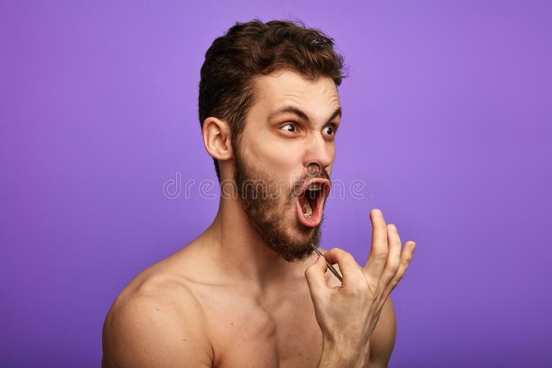 Ein leidender Mann, der heraus sein Barthaar, stehend über blauem Hintergrund zupft lokalisiert, lizenzfreies stockfoto