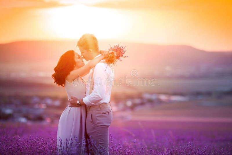 Ein liebevolles Paar, das auf einem Lavendelgebiet und -c$umarmen steht Schöne Braut gekleidet im luxuriösen Heiratskleid Braut u stockbilder