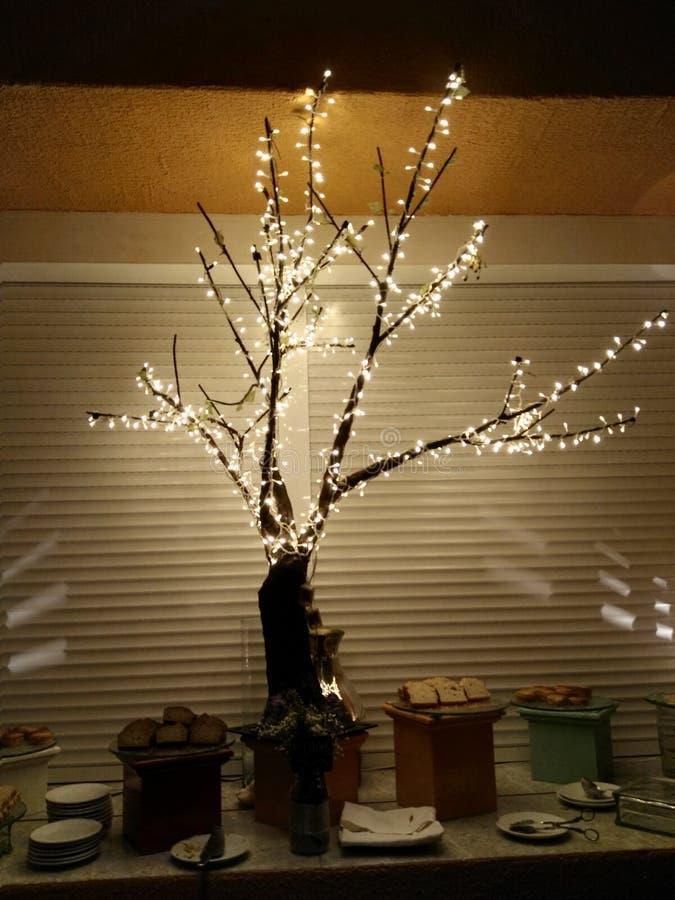 Ein ligthing Baum stockbilder