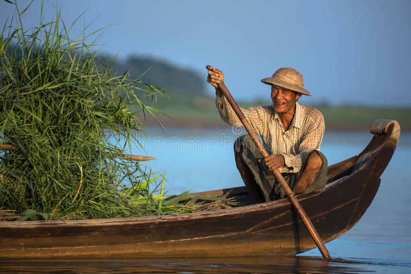 Ein lokaler birmanischer Mann in einem hölzernen Boot lächelt, während er ein Bündel grünen Bambus transportiert stockbilder