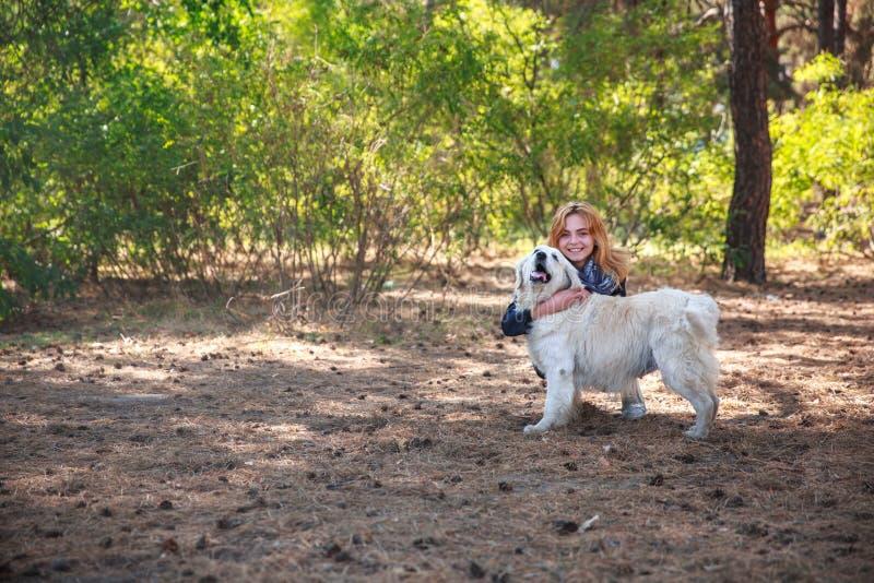 Ein Mädchen, das ihr Haustier im Park streicht lizenzfreie stockfotografie