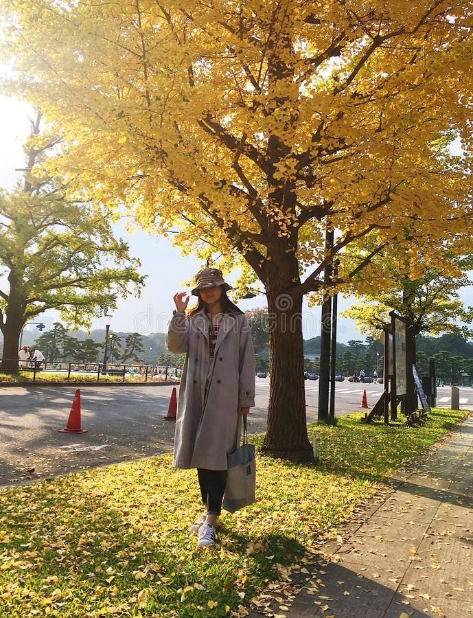 Ein Mädchen der Ginkgobaum unter der Sonne lizenzfreie stockfotos