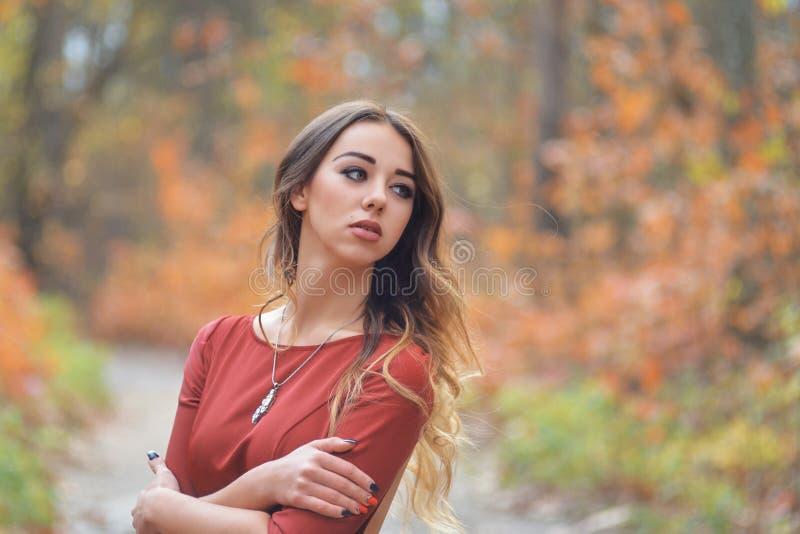 Ein Mädchen in einem roten Kleid in einem Herbstwald schaut beiseite lizenzfreies stockfoto